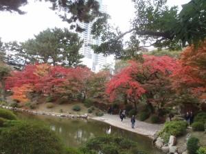 昼間の紅葉
